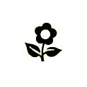 groothandel-bloemen-en-planten-bloemist