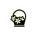 groothandel-bloemen-en-planten-marktkramer